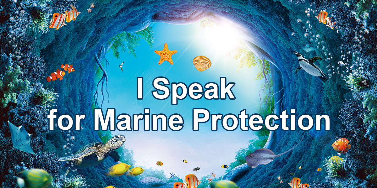 51Give Tangshan Love Action —— I Speak for Marine Protection